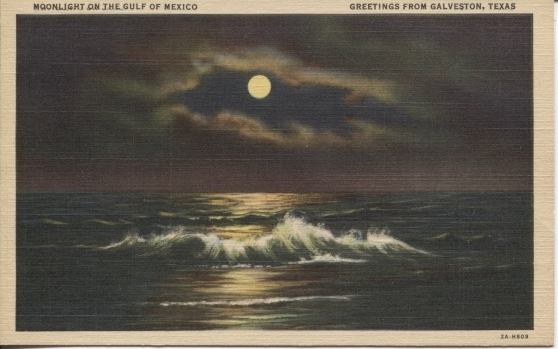 Image for Moonlight On The Gulf Of Mexico, Greetings From Galveston, Texas