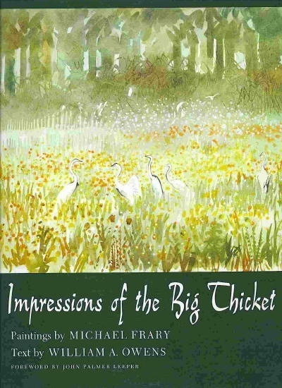 Image for Impressions Of The Big Thicket