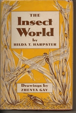 Image for The Insect World