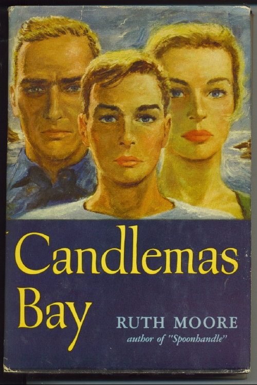 Image for Candlemas Bay