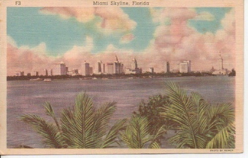 Image for Miami Skyline, Florida
