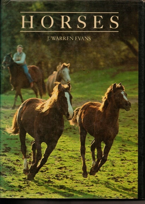 Image for Horses A Guide to Selection, Care, and Enjoyment