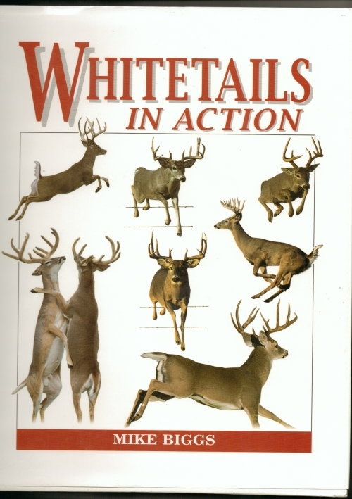 Image for Whitetails in Action