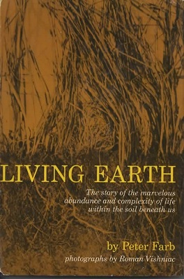 Image for Living Earth The Story of the Marvelous Abundance and Complexity of Life Within the Soil Beneath Us